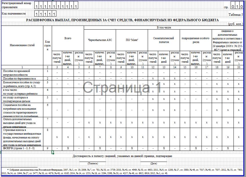 Образец заполнения 4-ФСС. таблица 5
