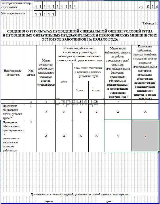 Образец заполнения 4-ФСС. таблица 10