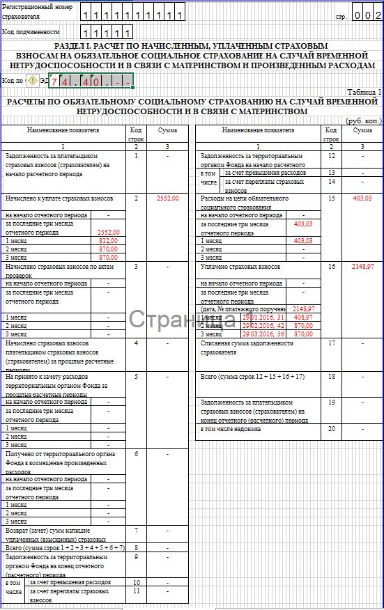 Образец заполнения 4-ФСС. Раздел I таблица 1